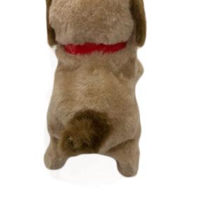 Shaking Tail Dog